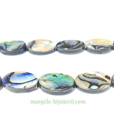 Scoica Paua, ovala, 13x8x3mm 1 buc