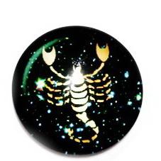Cabochon sticla zodiac, SCORPION, 25x6mm  1 buc