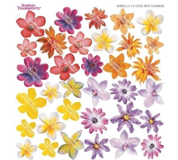 Folie imprimata Sospeso Trasparente 2/13 Little Red Flowers 1 buc