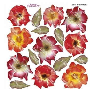 Folie imprimata Sospeso Trasparente 3/15  Red Rose 1 buc