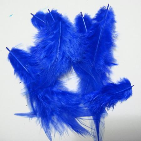 Pene albastre 10-14 cm 10 buc