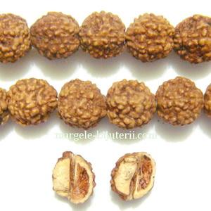 Margele, seminte de rudraksha, maro, cu 5 muchii, 7.5-8mm 1 buc